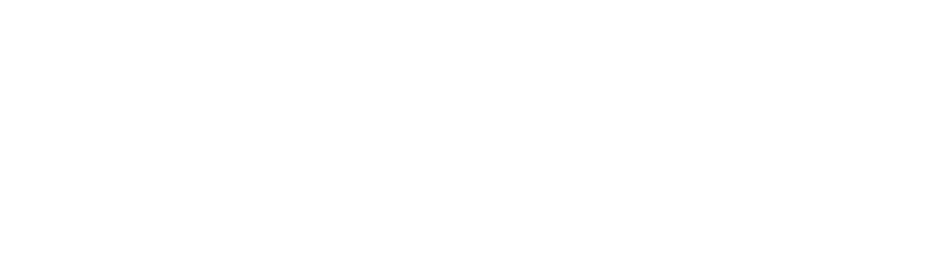 Rev Marketing